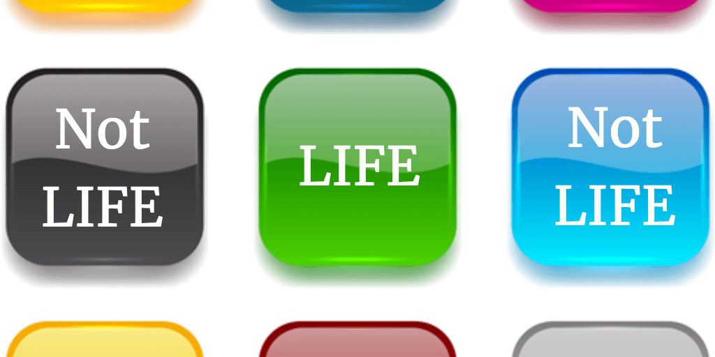 The Life App